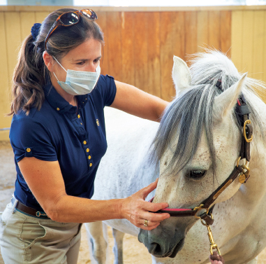 Dr. Sarah le Jeune, chief of the Equine Integrative Sports Medicine Service at the UC Davis veterinary hospital.