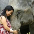 Traci Hayward with elephant